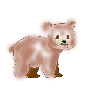 Avatar Teddybär